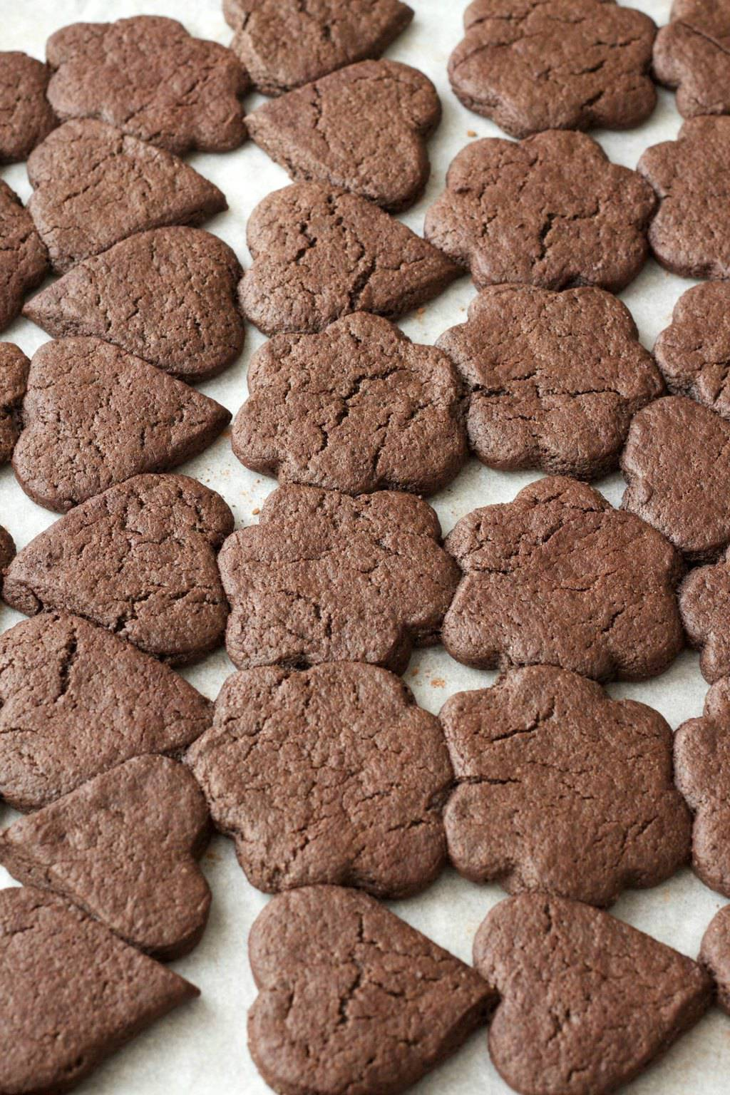Vegan Chocolate Sugar Cookies. Super easy and fun to make! #vegan #lovingitvegan #sugarcookies #dessert