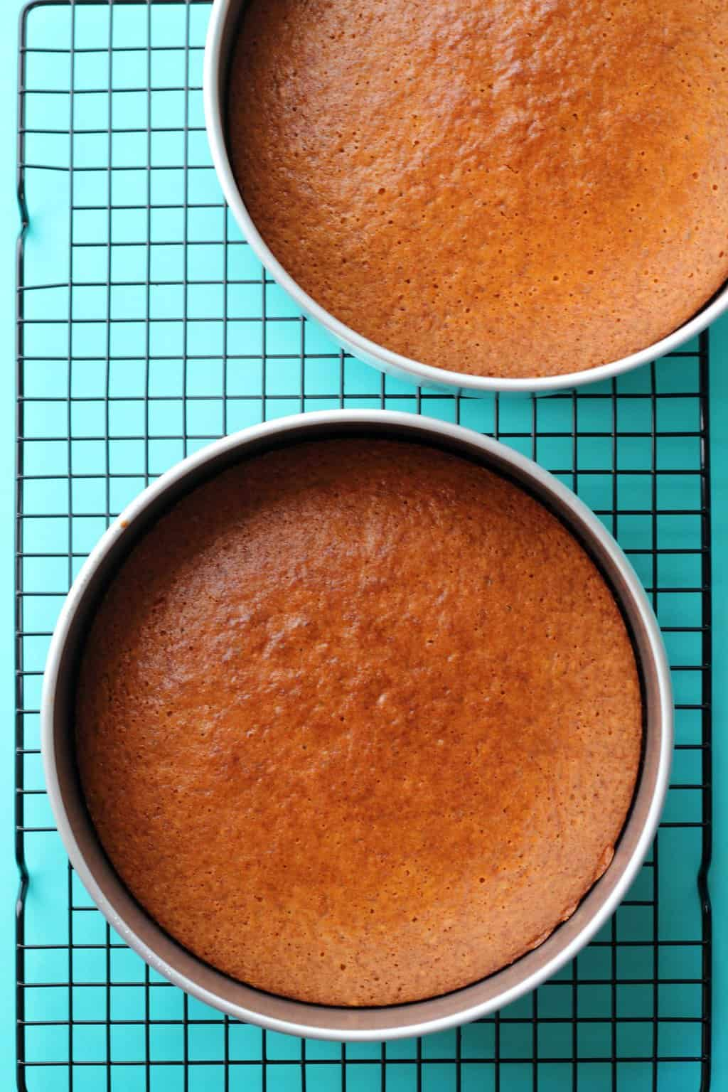 Vegan Lemon Cake in cake pans freshly baked and straight out of the oven.