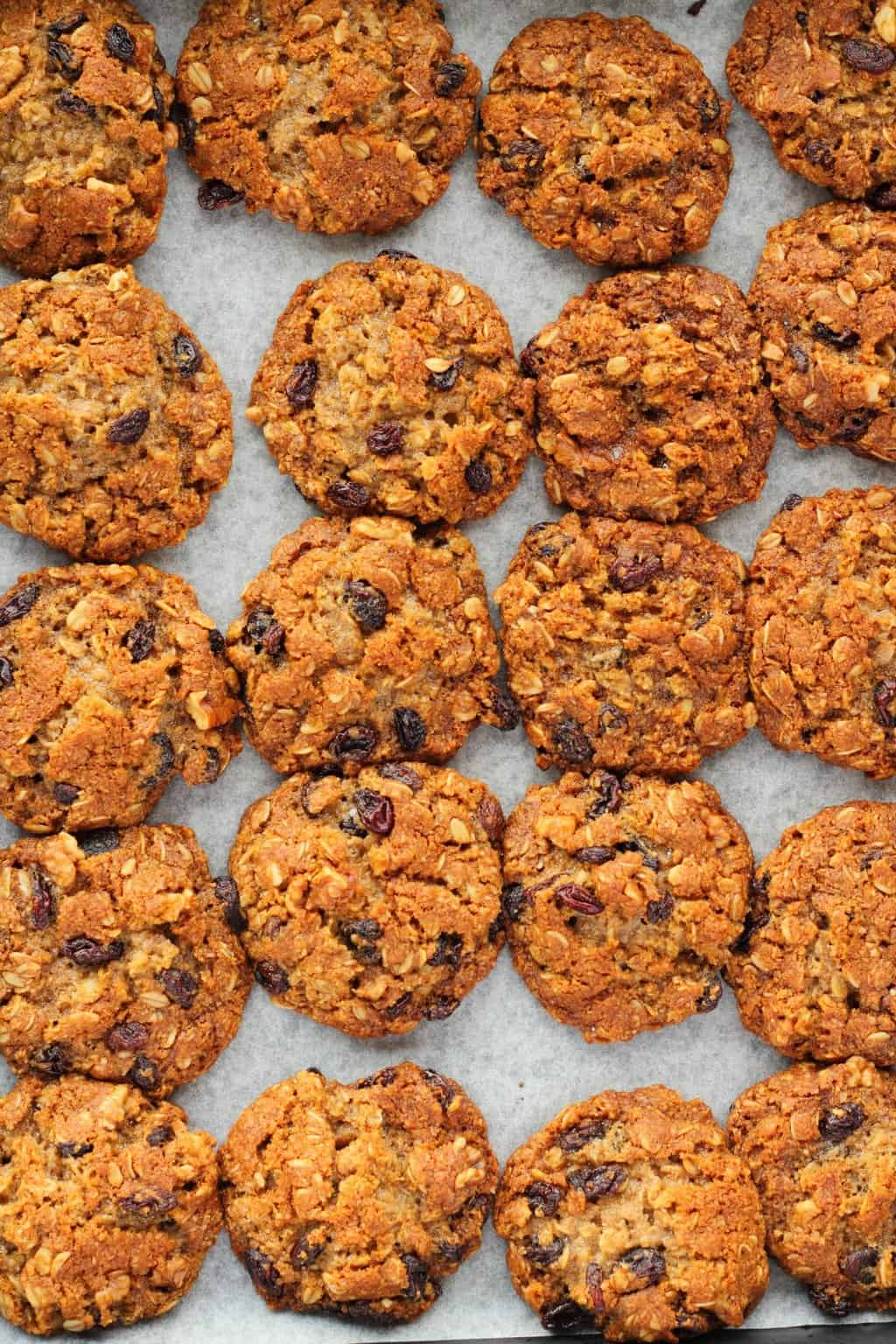 Vegan oatmeal raisin cookies freshly baked on a baking tray.