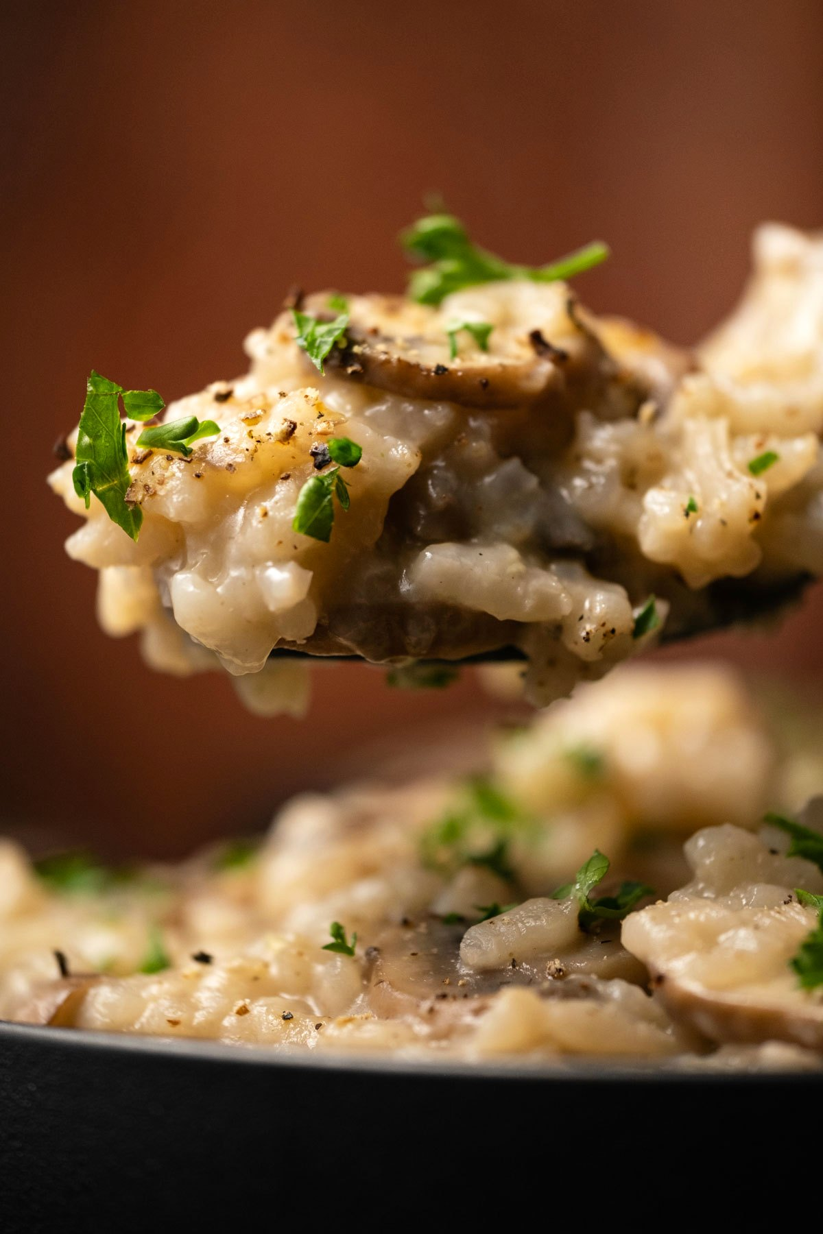 Spoon with mushroom risotto.